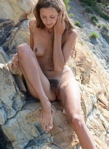 Hairy pussy gallery